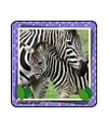 Baby Animal Photos Asst. Stickers