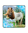Perfect Pony Photos Asst. Stickers
